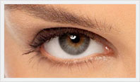 Face Surgery in Dubai, Rhinoplasty, blephoroplasty, facelifts, fillers, botox